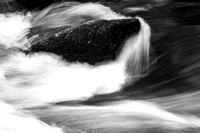 Rock in the River Monochrome