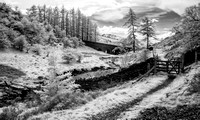 Bridge Whinlatter Pass 3
