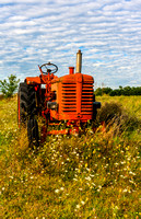 Red Tractor in a green Meadow.
